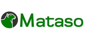 Mataso