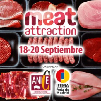 Cartel Meat Attraction 2018